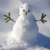Snowball 〜20代からの米国株積立投資〜